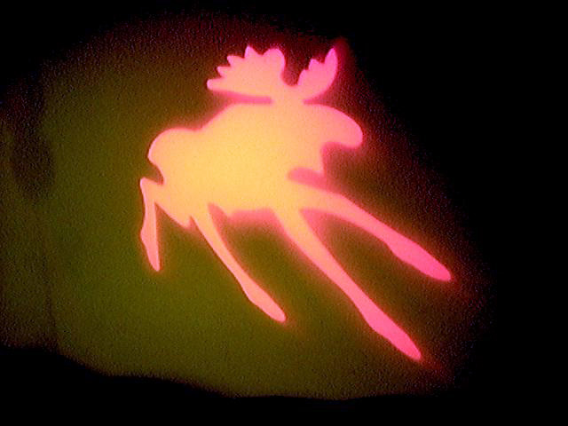 projected elk
